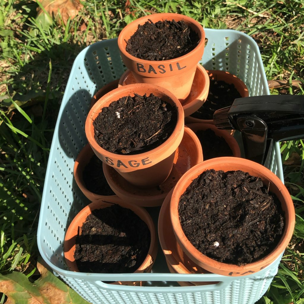 Image of a basket of tiny terra-cotta pots full of soil and labeled with the names of herbs.